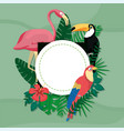 exotic birds cartoons vector image