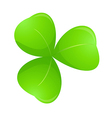 icon clover vector image vector image