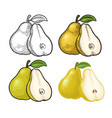 pear whole and half with leaf vintage color vector image vector image