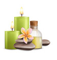 wellness and spa salon services vector image vector image