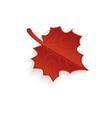 cartoon autumn fallen maple leaf isolated vector image