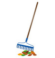 blue rake and dried leaves vector image