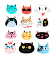 collection different portraits cats vector image vector image