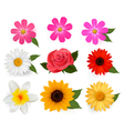 Flower icons vector | Price: 3 Credits (USD $3)