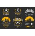 set logo and badges baseball vector image vector image