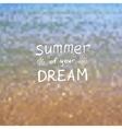 Blurred Summer Background vector image vector image