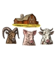 Farm animals set Pig cow and goat heads isolated vector image vector image