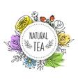 Herbal tea seamless pattern vector image vector image