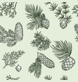 pine branches of trees and cones seamless pattern vector image