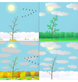 silhouette seasons in forest vector image