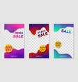 trendy temtplate for social networks storysocial vector image