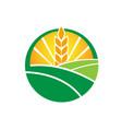 wheat farm agruculture farm logo design vector image