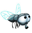 cartoon fly with big eyes isolated on a white vector image