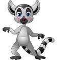 cartoon funny lemur vector image