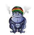 jamaican gorilla cartoon isolated on white vector image