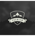 Mountain Design Element in Vintage Style for vector image vector image