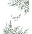 natural background with bracken vector image vector image