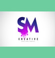 sm s m purple letter logo design with liquid vector image vector image