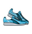 sport sneakers isolated vector image vector image