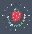 strawberry on dark background vector image