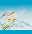 landscape with green grass dragonflies and vector image vector image