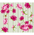 peonies seamless background vector image