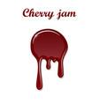 red cherry drip confiture 3d berry sweet jam spot vector image