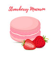 strawberry macaron with meringue cream vector image vector image
