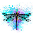 dragonfly on colorful background vector image