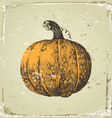 Hand drawn pumpkin vector | Price: 1 Credit (USD $1)