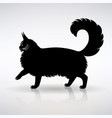 silhouette a standing cat side view vector image vector image