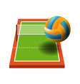 sport field volleyball game items ball and net vector image
