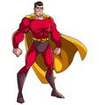 superhero standing tall vector image vector image