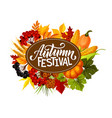 autumn festival vegetables harvest in foliage vector image vector image