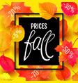 autumn sale background with maple quality vector image