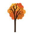 autumn tree plant isolated icon vector image vector image