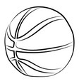 basketball drawing on white background vector image