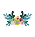 flowers leaves decoration nature isolated design vector image
