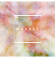 natural marble vector image