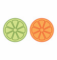 orange and lemon halves vector image