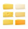Set of Cheese Swiss Cheddar Bri Parmesan Camembert vector image vector image