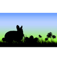 Silhouette of a Bunny with Easter Eggs vector image
