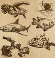 Underwater Sea Life set no1 - hand drawn vector image vector image