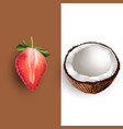 coconut and strawberry vector image