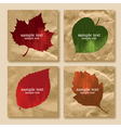 collection leaves on a paper vector image vector image
