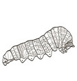 coloring insect caterpillar for adults vector image vector image
