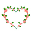 Crown of Thorns Flowers in A Heart Shape vector image vector image