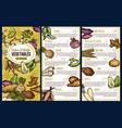 exotic vegetables sketch price list vector image