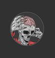 halloween skull brain vector image vector image