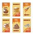 honey hand drawn banner vector image